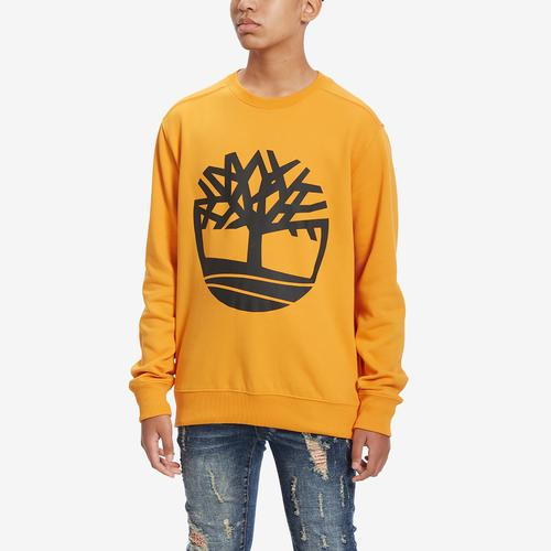 First view of Men's Essential Tree Logo Crew by Timberland